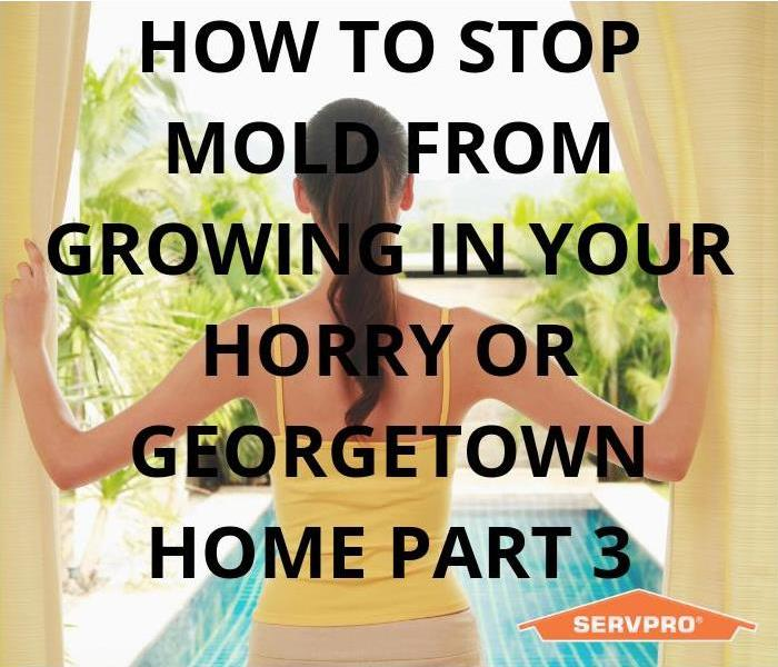 Why SERVPRO How To Stop Mold From Growing In Your Horry & Georgetown Home Part 3
