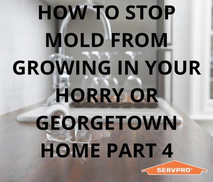Why SERVPRO How To Stop Mold From Growing In Your Horry & Georgetown Home Part 4