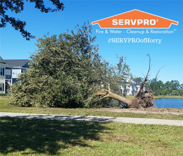 The Beach House Garden City Sc: Myrtle Beach, SC Flooding And Storm Damage Cleanup And