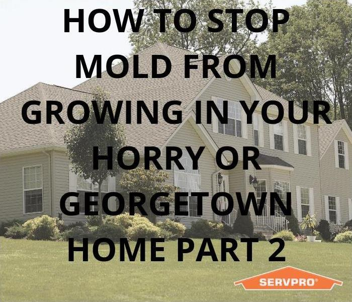 Why SERVPRO How To Stop Mold From Growing In Your Horry & Georgetown Home Part 2