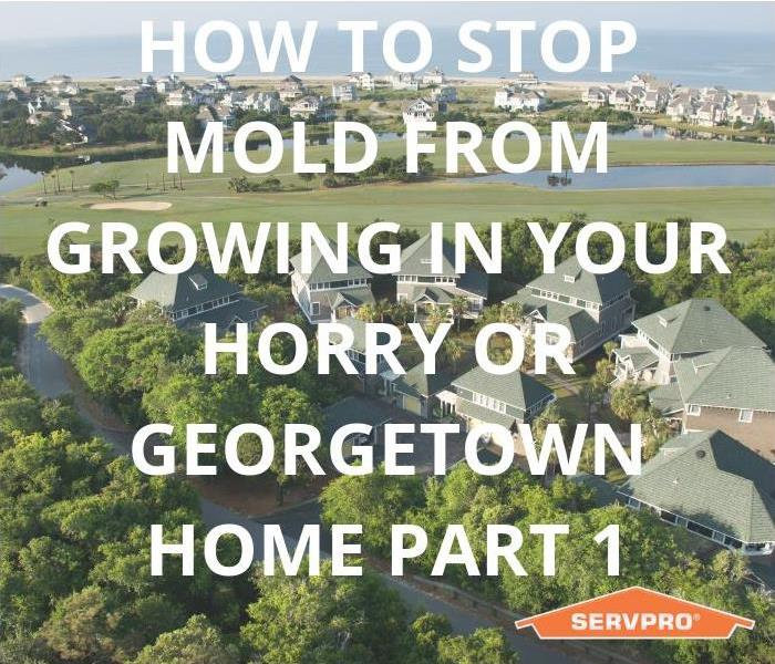 Why SERVPRO How To Stop Mold From Growing In Your Horry & Georgetown Home Part 1