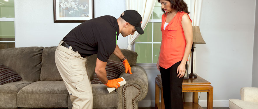 Myrtle Beach, SC carpet upholstery cleaning