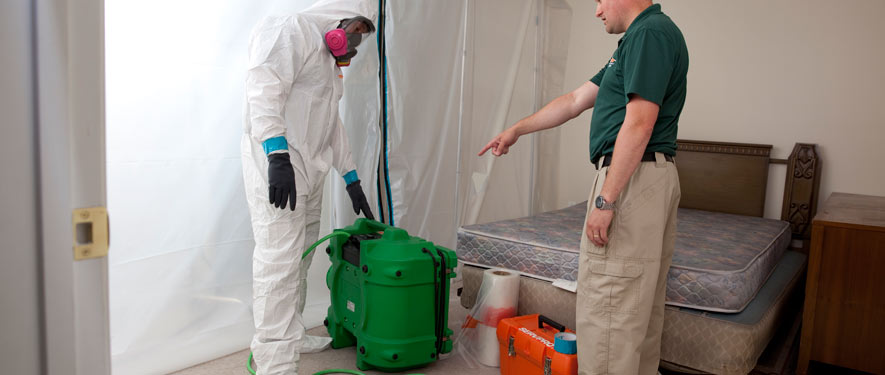 Myrtle Beach, SC mold removal process